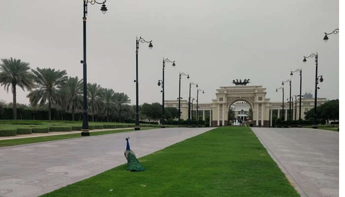 at Zabeel palace