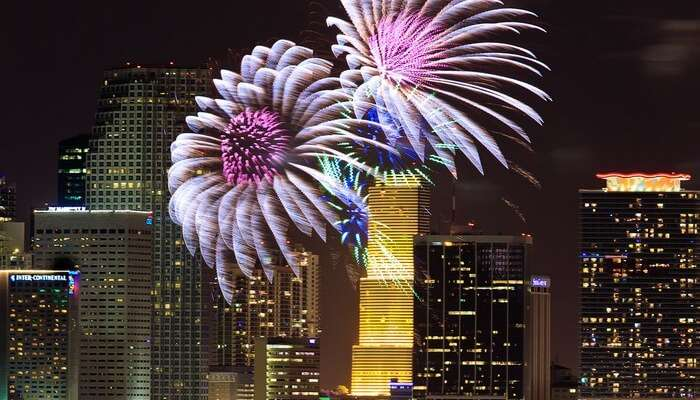 The Florida New Year celebrations witness a floral display of fireworks during New Year Celebrations