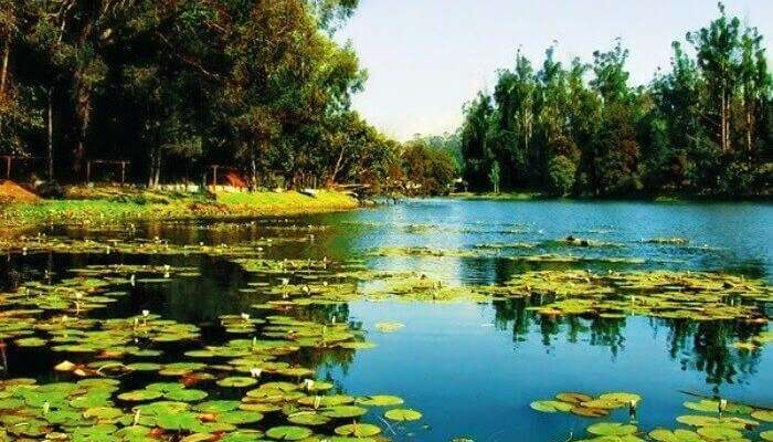 35 Entrancing Things To Do In Kerala With s In 2020