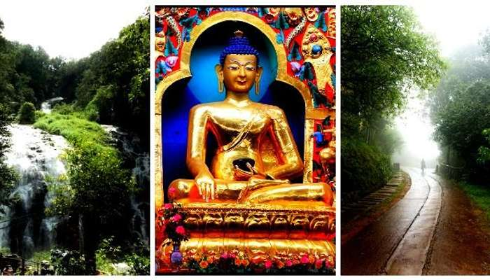 Experience the abbey waterfalls, monastery, wildlife sanctuaries in Coorg