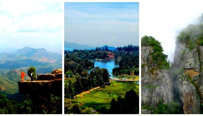 Visit Kodaikanal for pillar rocks, creeks, long stretches of forests