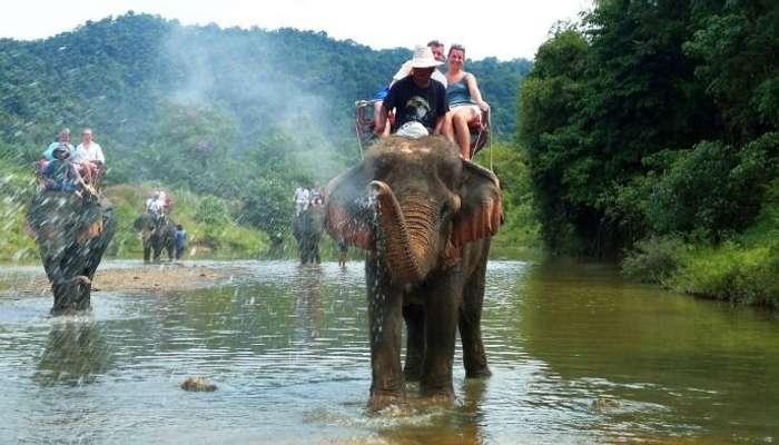 Enjoy Elephant Safari at Mount Harriet, Port Blair