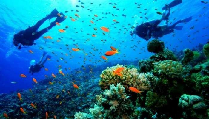 Scuba Diving and Snorkelling- popular things to do in Andaman