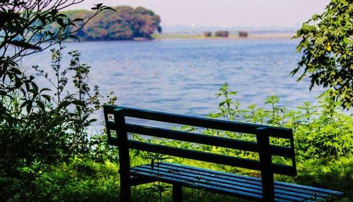 Okhla Bird Sanctuary, one of the much sought after places to visit in Delhi in monsoon
