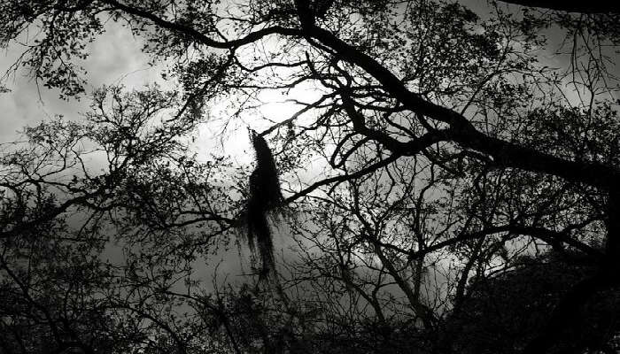 10 Haunted Places In Delhi & Associated Haunted Stories