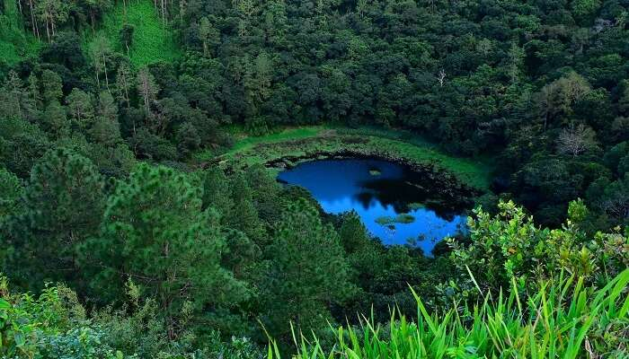 The Crater Lake formed at Trou Aux Cerfs volcano in Mauritius