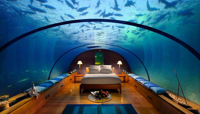10 Underwater Hotels In The World In 2020 For A Stay With The Sharks