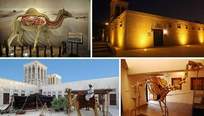 Free places to visit in Dubai include the Camel Museum