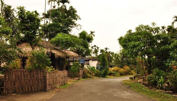 MawlynnongVillage of Meghalaya is considered to be the cleanest and the one of the most unexplored places in India