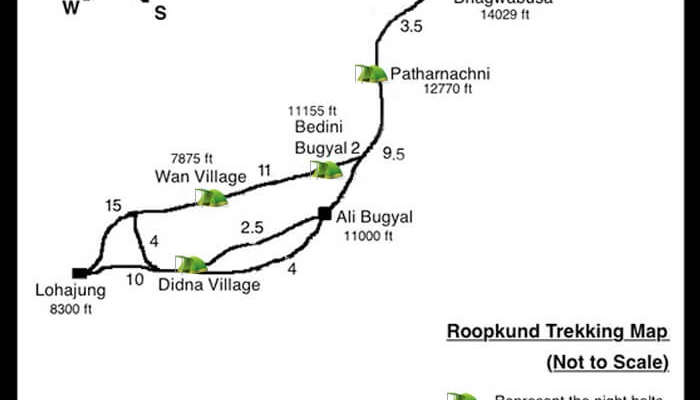 There are plenty of camping options on Roopkund trek