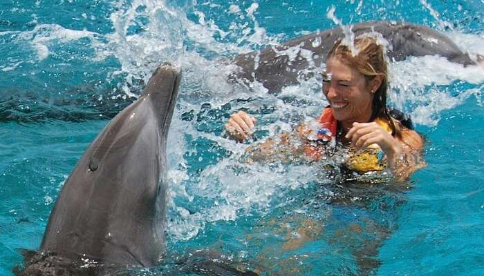 A girl enjoying her afternoon swim with the cute dolphins of Sentosa Underwater World