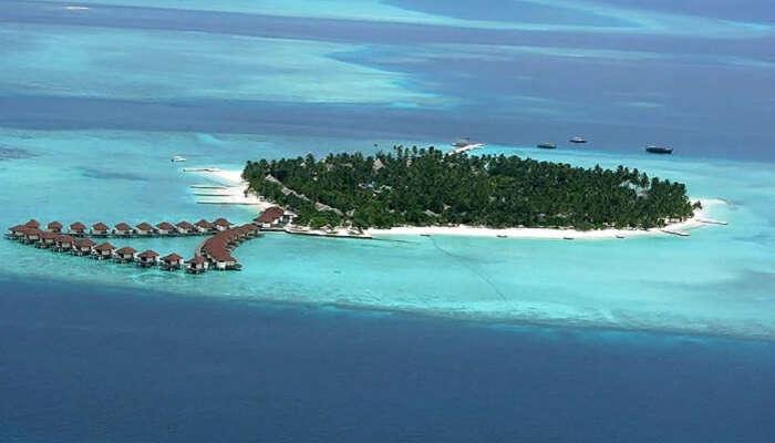 جزیره آلیماتها تور مالدیو