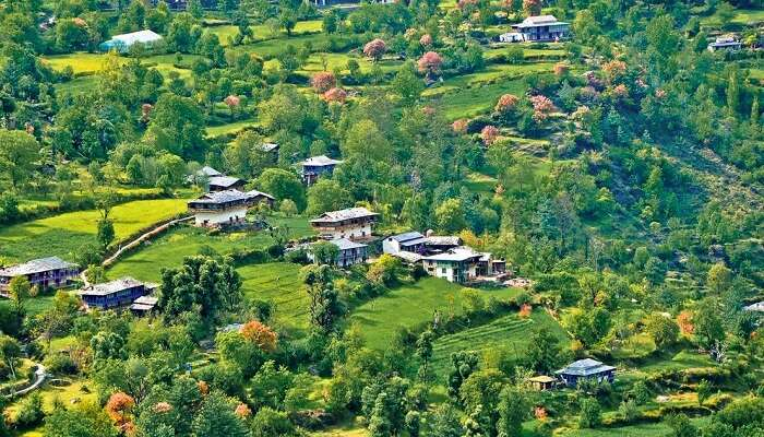 An aerial view of the majestic Banjar Valley near Tirthan