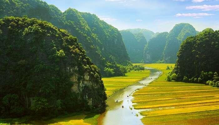 River cutting through the paddy fields of Ninh Binh in Vietnam