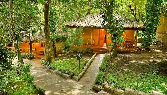 The cottage rooms of Woods N Spice Resort in Thekkady
