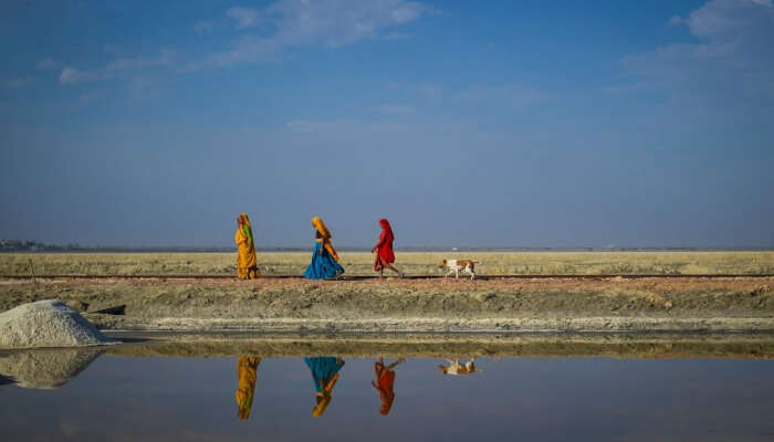 Local women walking beside the Sambhar Salt Lake