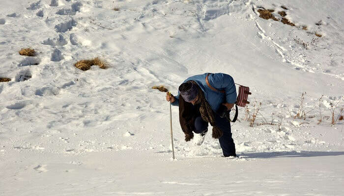 10 Reasons To Visit Auli In Winter
