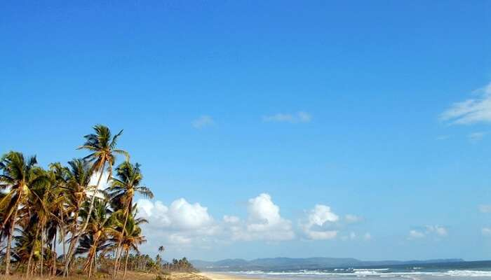 The Varca Beach in Goa that is one of the cleanest beaches in India