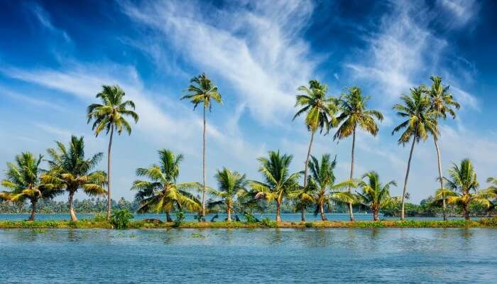 Kerala Vs Himachal For Honeymoon: A 10-Point Comparison