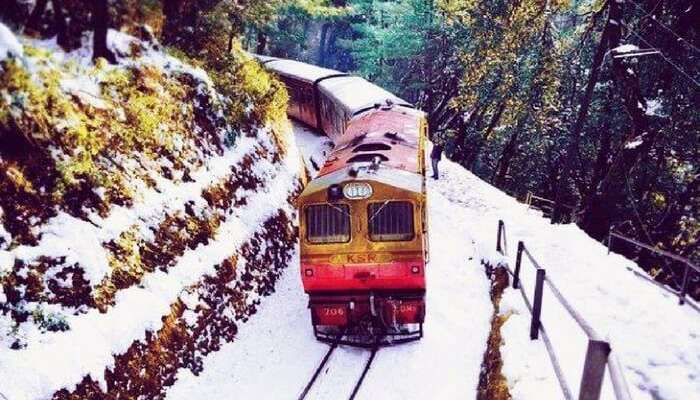 Toy train ride running running from Shimla to Kalka