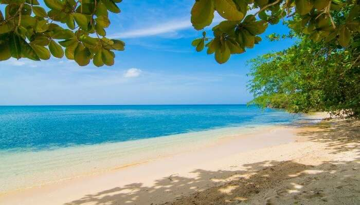 blue waters of Negril beach merging with brown sand