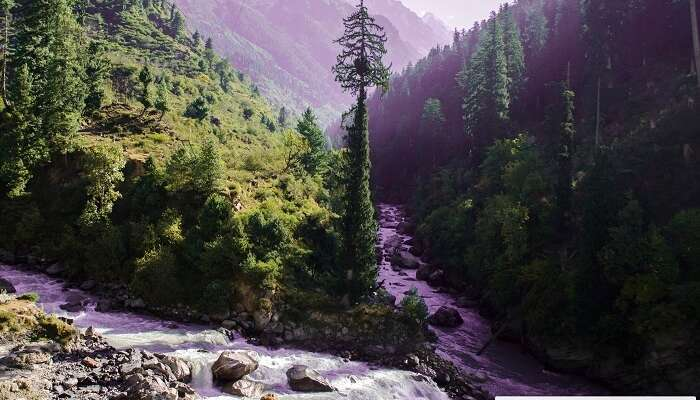 Tributaries of a river merging together in the Parvati Valley