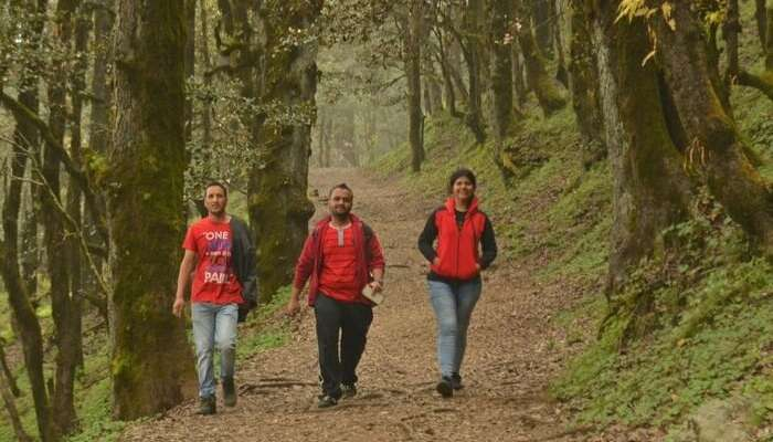A group of travelers trekking through the woods in Tirthan Valley
