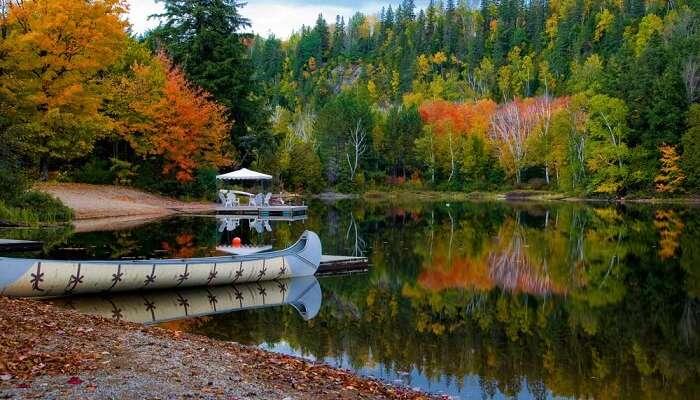 Algonquin-Provinzpark Kanada