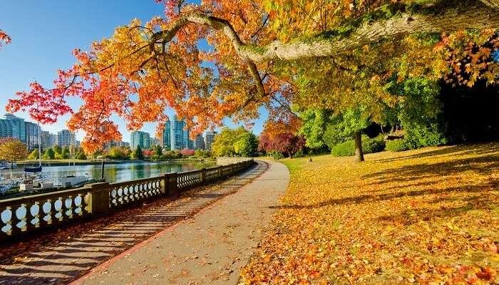 Berühmte Parks in Vancouver Kanada zu besuchen
