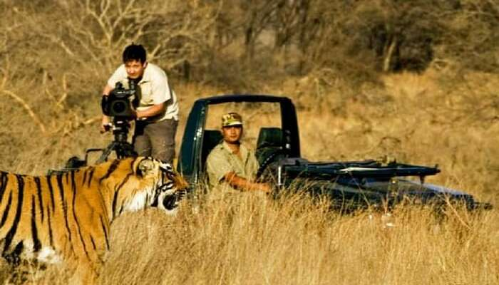 Kanha National Park 2020: What To Expect From This Wildlife Reserve