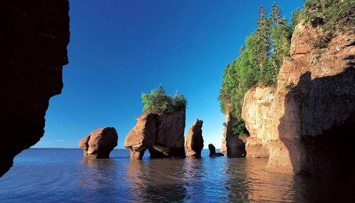 berühmte Bucht von Fundy in Kanada