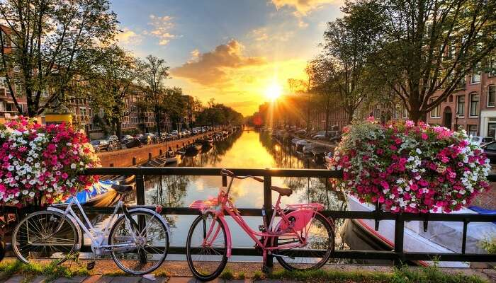 Beautiful sunrise over the river in Amsterdam