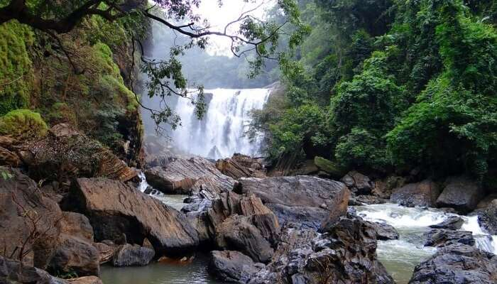 Image result for Molangi Falls
