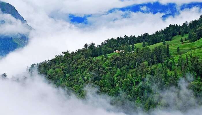 15 Best Places To Visit In Uttarakhand - Ranikhet