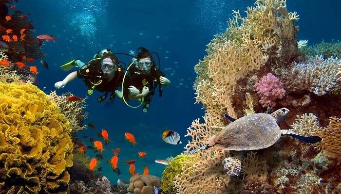 Travelers enjoy scuba diving