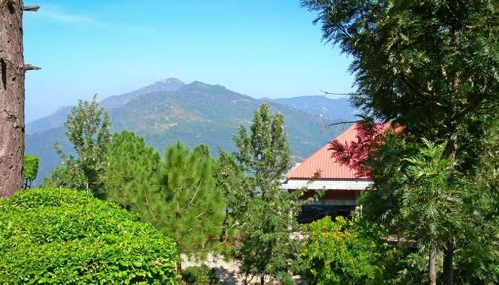 16 Updated Hill Stations Near Chandigarh To Go In 2019