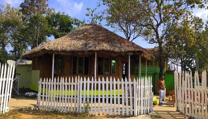 Perfect location for tea - enroute Shillong - Cherrapunji