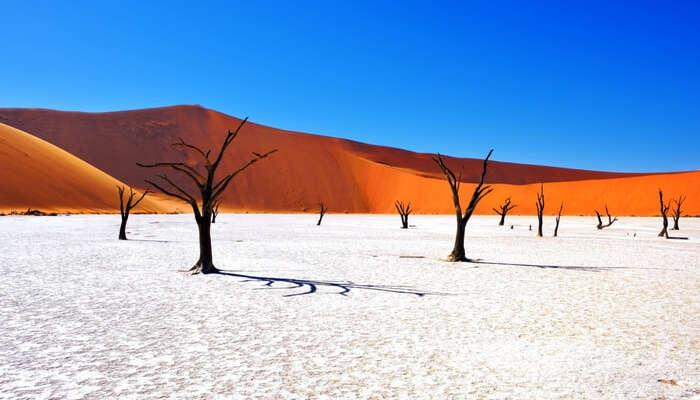 acj-2003-beautiful-landscapes-around-the-world (18)