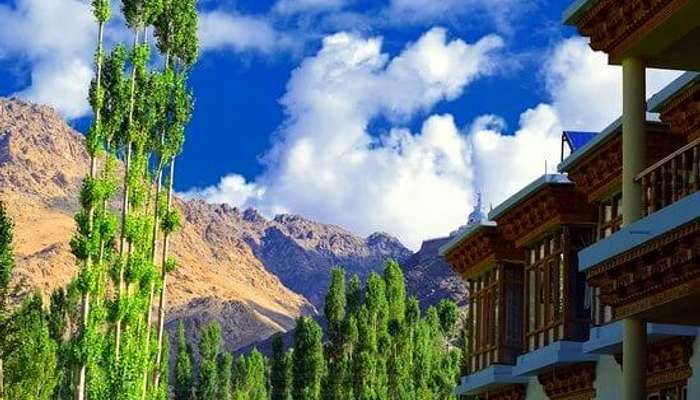 stay in ladakh at Gangba Homestay