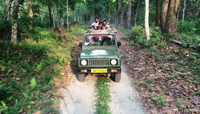 people taking a jeep safari through Gorumara National Park