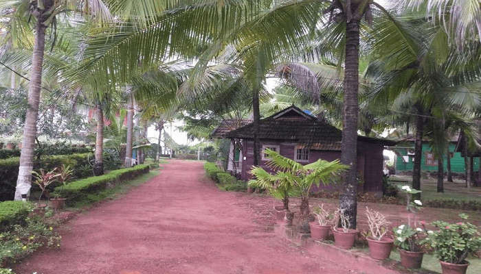 Pranav Resort amid a palm fringed premises in Kann