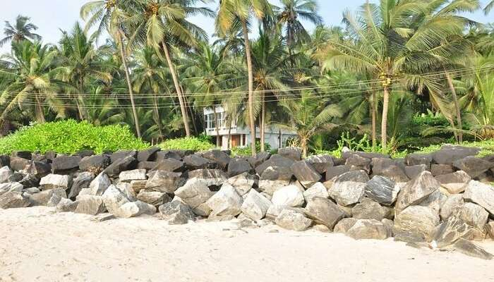 plus récent 5ec4b dc094 12 Best Resorts In Kannur For A Cool and Cozy Beach Vacation