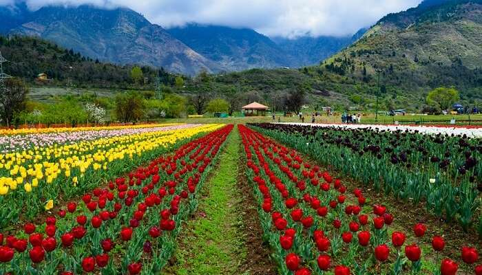30 Updated Places To Visit In Kashmir (with photos) To Have Fun In 2021
