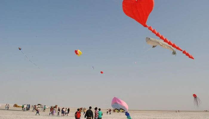 kite flying on makar sakranti