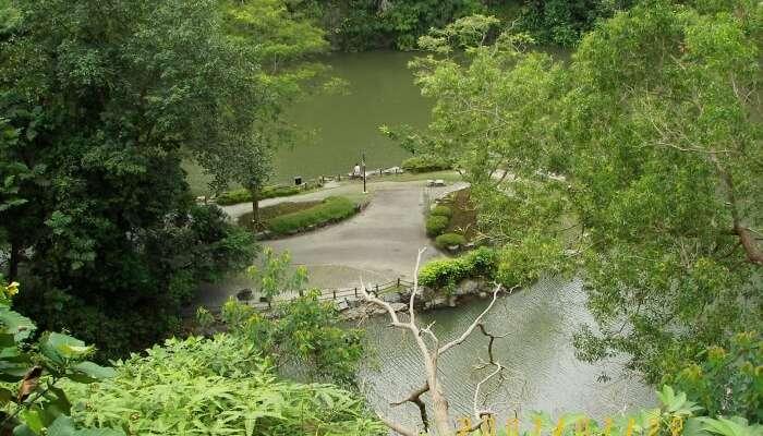 Bukit Batok Nature Park