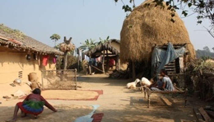 Visit the Chitwan Tharu Villageb