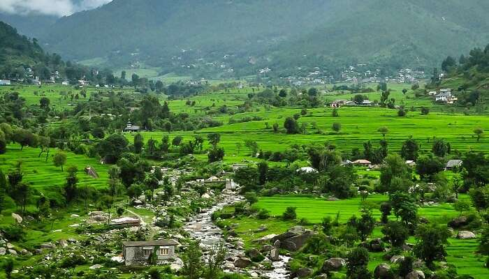 Why You Should Visit Karsog Valley