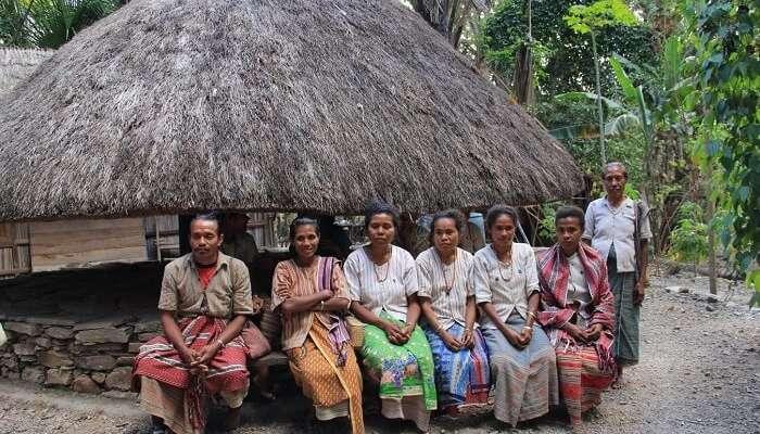 tribes,timor,com