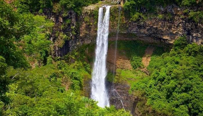 Black-River-Gorges-National-Park