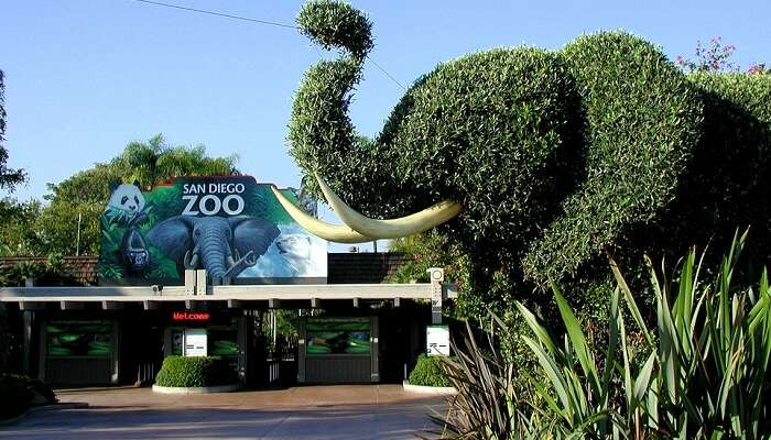 Top 10 Largest Zoos In The World That Are A Must Visit! Zoos In Usa Map on nashville usa map, art usa map, zip usa map, salem usa map, golf usa map, rv parks usa map, lake usa map, icons usa map, theme parks usa map, baseball usa map, ncis usa map, campground usa map, school usa map, adventure park usa map, manhattan usa map, heritage usa map, game of thrones usa map, airport usa map, river usa map, blue usa map,